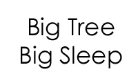 Big Tree Big Sleep